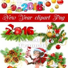 Новогодний клипарт в Png – Хвоя