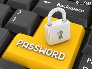 Password Safe Portable 3.47.1 FoxxApp